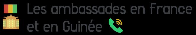 contact ambassade guinee